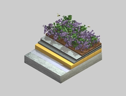 extensive-green-roofs